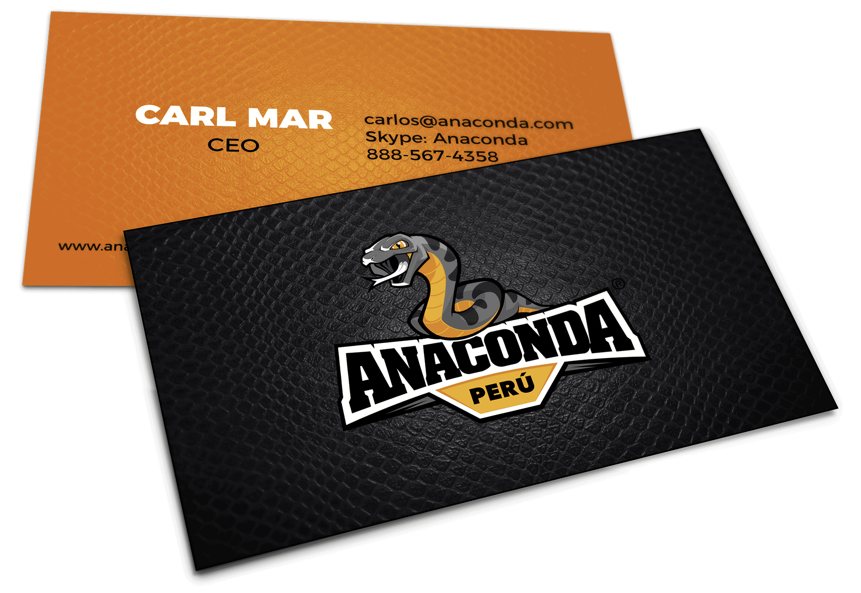 anaconda business card
