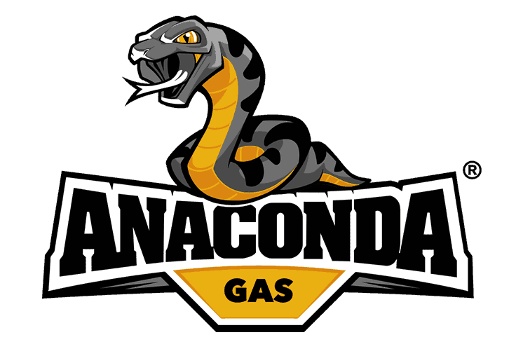 Logo design Anaconda