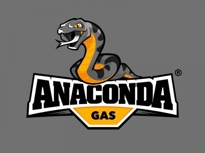 mascot logo design