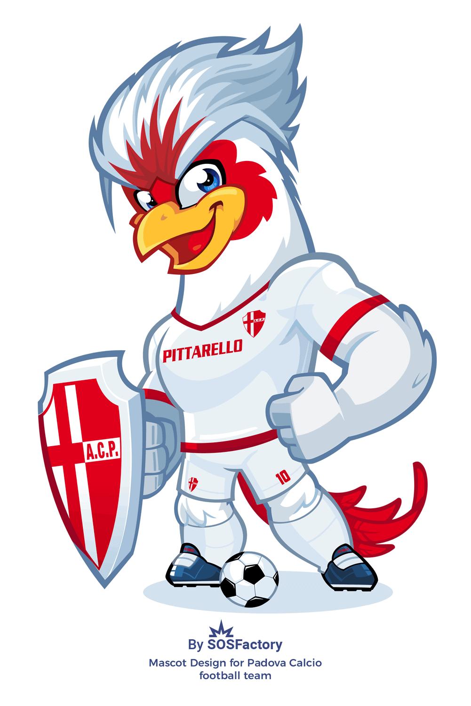 Padova Calcio disegno della mascotte